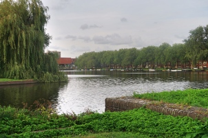 Cedars location
