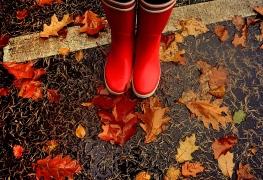 Wellies in Fall