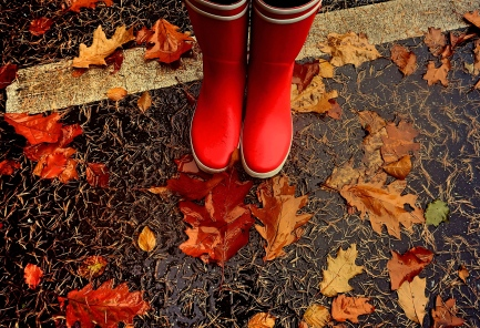 Wellies in Fall