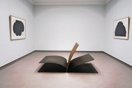Carel Visser, Book